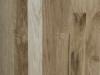 White-Oak-1-Common-150x150.jpg