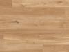 VGW85- French Oak.png