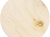 Northern White Pine.jpg