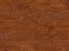 EW05-Hickory Cinnamon.png