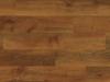 HC01-Dawn Oak.png