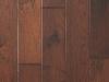 Hickory Chestnut.jpg